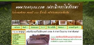 หน้าเวป www.teakyou.com